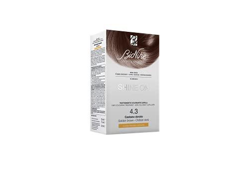 BioNike Shine On Trattamento Colorante Capelli (Tono Castano Dorato 4.3) - 1 flacone x 75 ml. + 1 tubo x 50 ml. (Totale 125 ml.)