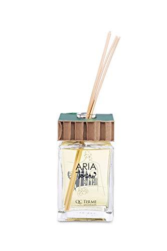 QC Terme Aria Torino 500ml Art Edition, Profumatore per Ambiente con Diffusore a Bastoncini, Fragranza Fresca, Fiorita e Legnosa, Made in Italy