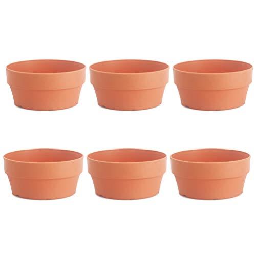 DOITOOL 6 vasi in Plastica, cactus, vasi per fiori e piante grasse con foro di drenaggio, ideali per piante artigianali (calibro 12,5 cm)