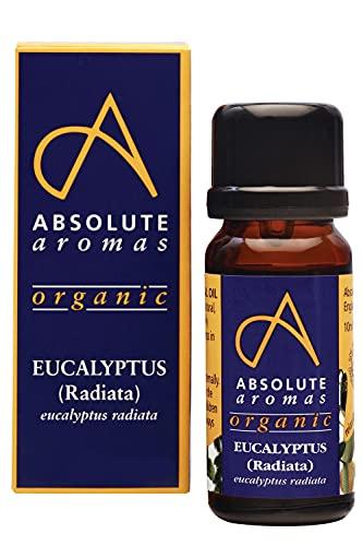 Absolute Aromas Olio Essenziale di Eucalipto Radiata Biologico 30 ml - 100% puro, naturale, non diluito, vegano e non testato su animali – Da utilizzare in miscele per diffusori ed aromaterapia.