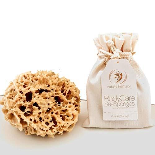 BodyCare - Spugna da mare a nido d'ape per il bagno e l'esfoliazione delicata