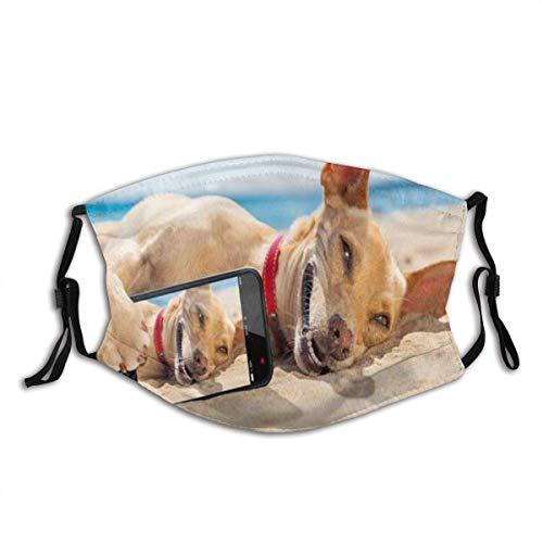 Telefono Chihuahua cane rilassante riposare godere sdraiato sulla Siesta Snapshot Sport ricreazione maschera viso maschera carbone attivo, per feste, viaggi, uso quotidiano, passamontagna lavabile