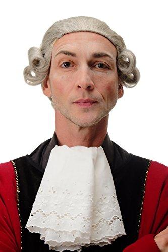 WIG ME UP - F2588-51 Parrucca di qualità Uomo Carnevale Teatro Barocco Lord Nobiluomo Nobile Grigio