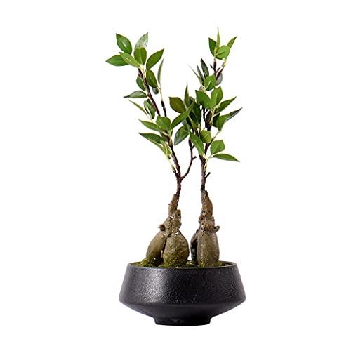 liushop Bonsai Artificiali Pianta Artificiale Bonsai Moderna di Simulazione della pianta Verde dei Bonsai in Vaso Ornamenti Adatto per Camera Porch Ufficio Tatuaggi Decorazione di Piante Finte