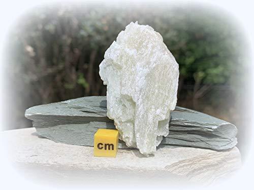 Talco Spiritual Healing Crystal Mineral Stone certificato SilverGeo® ✔️100% autentico