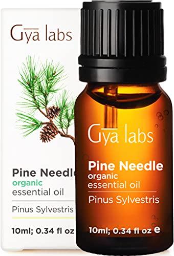 Gya Labs Olio essenziale di pino biologico per alleviare il dolore e la concentrazione - diffuso per il rilassamento e purifica l'aria - 100 puro grado terapeutico naturale per l'aromaterapia - 10ml