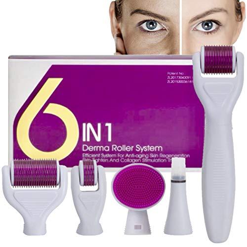 Derma Roller,AMAYGA Dermaroller Viso,6 in 1 Derma Roller Kit,Anti Invecchiamento Strumento,Per rigenerazione della pelle,rughe,macchie scure,macchia di acne