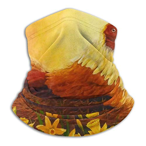 kasonj - Bandana per il viso con uovo crudo sugli occhiali, con scaldacollo a bandana, antipolvere, antivento, traspirante, pesca, escursionismo, corsa, ciclismo
