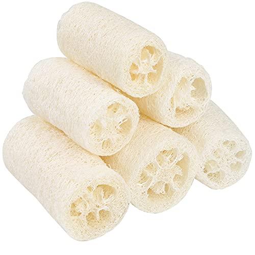 Spugna di Luffa Naturale Biodegradabile Luffa Spugna Il Corpo Spa Scrubber Esfoliante Loofah per Fare Il Bagno e Pulire Gli Utensili da Cucina 6 Pezzi