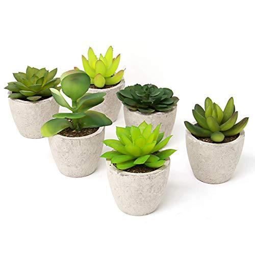 Maison & White Set di 6 piante succulente artificiali | Piccolo cactus finto falso con vasi grigi | Ideale per la casa, l'ufficio e la decorazione esterna