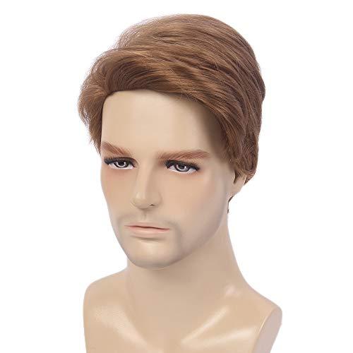 STfantasy Parrucche corte da uomo Tipo maschile Stratificato ondulato Fluffy Cosplay Party Marrone