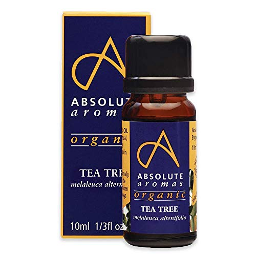 Absolute Aromas Olio Essenziale di Tea Tree Bio 10 ml - Puro, Naturale, Non Diluito, Cruelty Free e Vegan - per Aromaterapia, Diffusori, Capelli e Cura della Pelle