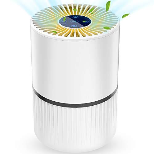 Laluztop Purificatore d'Aria 4-in-1 Purifiers Vero HEPA, Filtri di Carbonio Attivi,3 velocità 3 Temporizzazione Smart Filter Change Promemoria per Le allergie Fumatore Cattura Fumo, Polvere, Polline