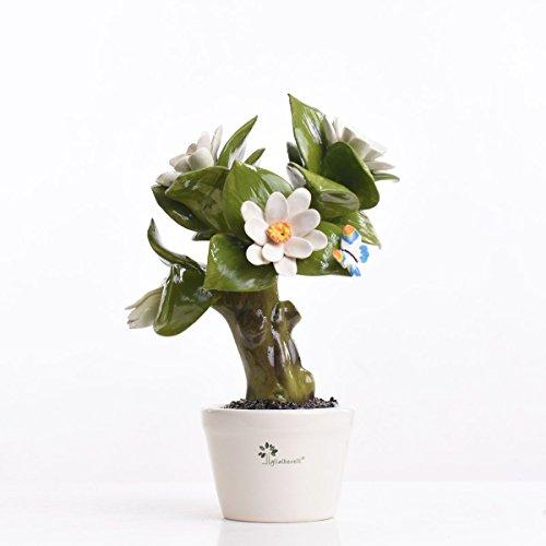 Gli Alberelli Pianta Profumatore Capodimonte Made in Italy h 25cm (Magnolia)