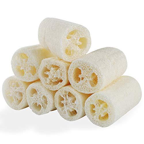8 Confezioni di Luffa Naturale, Spugne per il Corpo Naturali in Luffa per Fare il Bagno, Lavare i Piatti, Pulire la Cucina (6 * 10 cm)