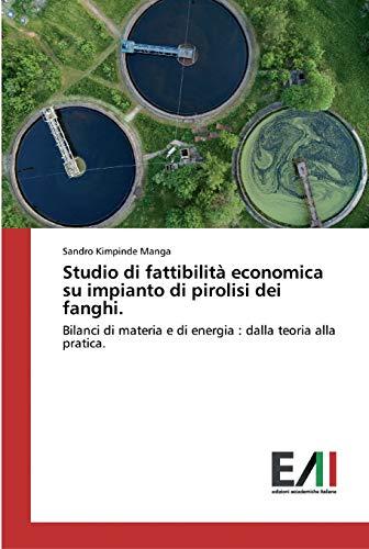 Studio di fattibilità economica su impianto di pirolisi dei fanghi.: Bilanci di materia e di energia : dalla teoria alla pratica.