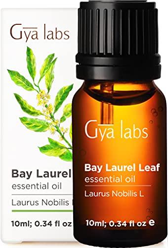 Gya Labs Olio Essenziale di Alloro per Capelli - Olio di Alloro Puro per Dolore Muscolare e Sonno - 100 Naturale Olio Essenziale Alloro per Diffusori Aromaterapia - 10ml