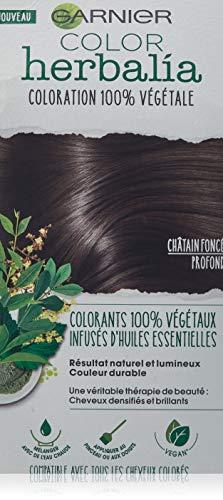 Color herbalia colorazione 100% Vegetale Castano Scuro Profondo