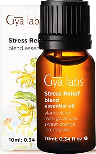 Miscela di olio essenziale di antistress - Grado terapeutico per diffusore, mollusco mente e rilassamento - Ylang Ylang, arancia dolce, citronella, geranio rosa - 10 ml (0,34 oz)