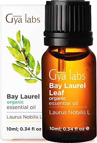 Gya Labs Olio Essenziale di Alloro Biologico per la Crescita dei Capelli - Olio di Alloro per Sollievo dal Dolore e Sonno - 100 Naturale Olio Essenziale per Diffusori Aromaterapia - 10ml