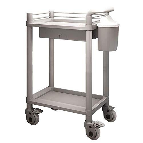 GHCXY Carrelli Mobili, Carrello per la Casa Carrello 2-Shelf Abs Heavy Duty Abs Storage Astenitore a Mano, su Ruote, Carrello Medico per Beauty Parrucchiere Salone, Supporto 220 Libbre/Grigio/54 * 37