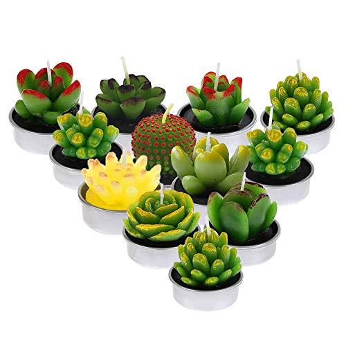 Ousuga - Candele profumate a forma di cactus delicate, fatte a mano, set regalo per la decorazione della casa, senza fumo, candele Yankee Candle per compleanni e feste (stile 1)