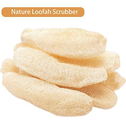 Boao 6 Pezzi Intero loofah(22-35 cm) Naturale esfoliante biodegradabile spugne di luffa Piatto di cellulosa Scrubber Scrubber per Cucina Bagno