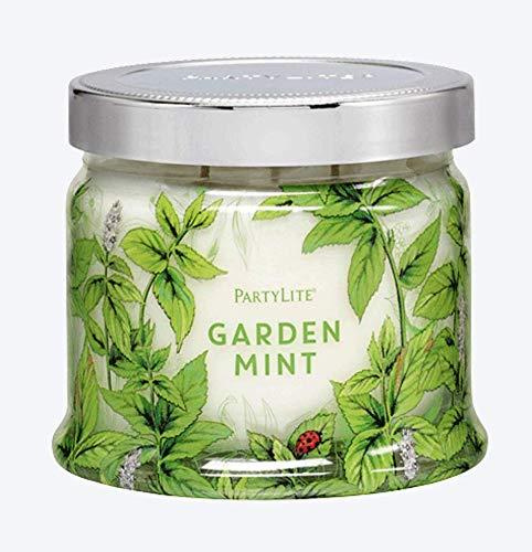 PartyLite - Candela in barattolo con 3 stoppini, colore: menta da giardino