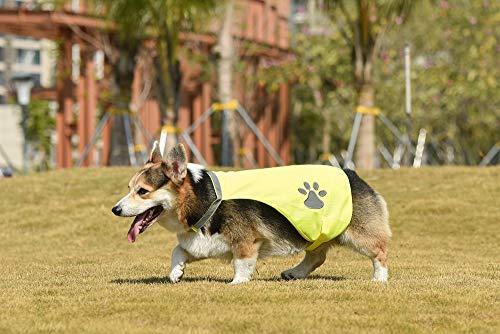 AYKRM Giubbotti di Sicurezza Cani Giallo Arancione Fluo (35, Giallo)