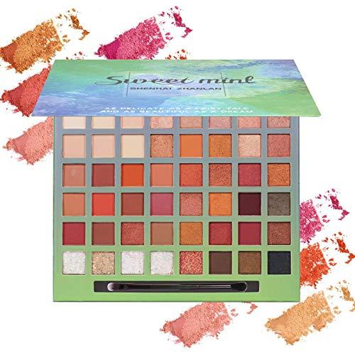 Onlyoily Glitter Powder trucco opaco lucido a prova di sbavatura impermeabile Makeup Palette Professional – Lunga Durata, Palette di Ombretti Shimmer Face Makeup Kit (48 Colori)