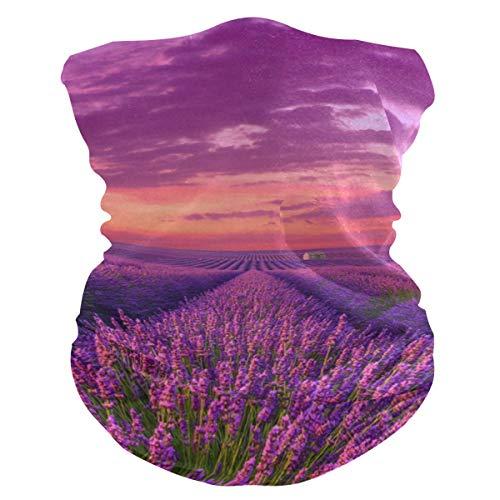 Bandane da donna in tessuto multifunzione, modello unisex provenzale viola lavanda maschera modello stampabile per uomo donna all'aperto fascia copricapo asciugamano viso lavabile