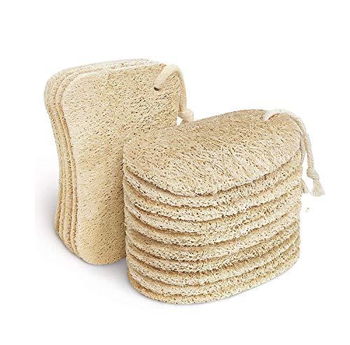 AiYoYo 15 Psc Luffa Spugne per pulizia, con cordoncino, Natural Sponge Eco per Cucina, Biodegradabili, Compostabili, Spugna Cucina Naturale
