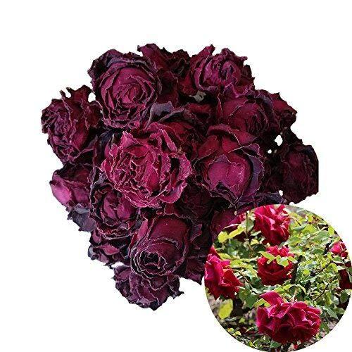 TooGet Profumati Fiori di Rosa Rosso Scuro, Boccioli di Rosa Rosso Intenso Naturali Tè di Fiori Essiccati, Tisana, Commestibile - 60g