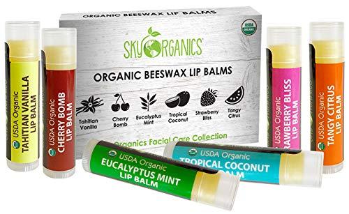 Sky Organics USDA Organic Lip Balm 6 Pack assortiti Sapori - con cera d'api, olio di cocco, Vitamina E. Miglior Lip Butter Chapstick per Dry labbra: per adulti e bambini Lip Repair