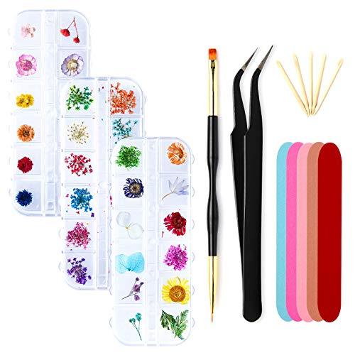 Vathery 72 pezzi Fiori Secchi Nail Art Design Set, Vero Fiori Decorazione Adesivi 3D per Unghie Nail Art Accessori