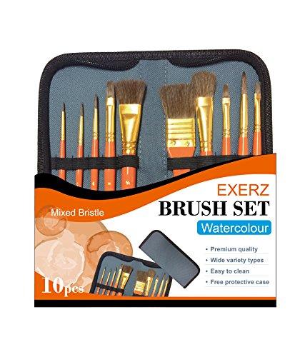 Exerz JH023 Set di pennelli per pittori - 10 pennelli professionali misti in una custodia protettiva da viaggio/perfetto per acquerelli, acrilico, tempera