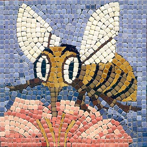 Kit Mosaico Fai da Te, 15x15cm, Ape