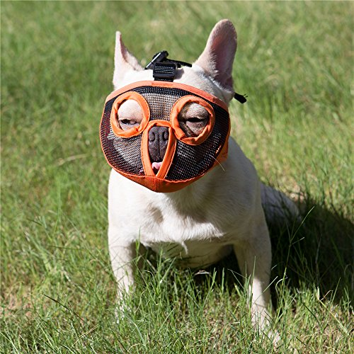 JYHY Breve Muso Muso di Cane Bulldog Muzzle- Regolabile in Rete Traspirante per mordere abbaiare Masticare Training Dog Mask,New Orange M